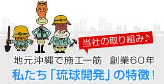 私たち「琉球開発」の特徴!